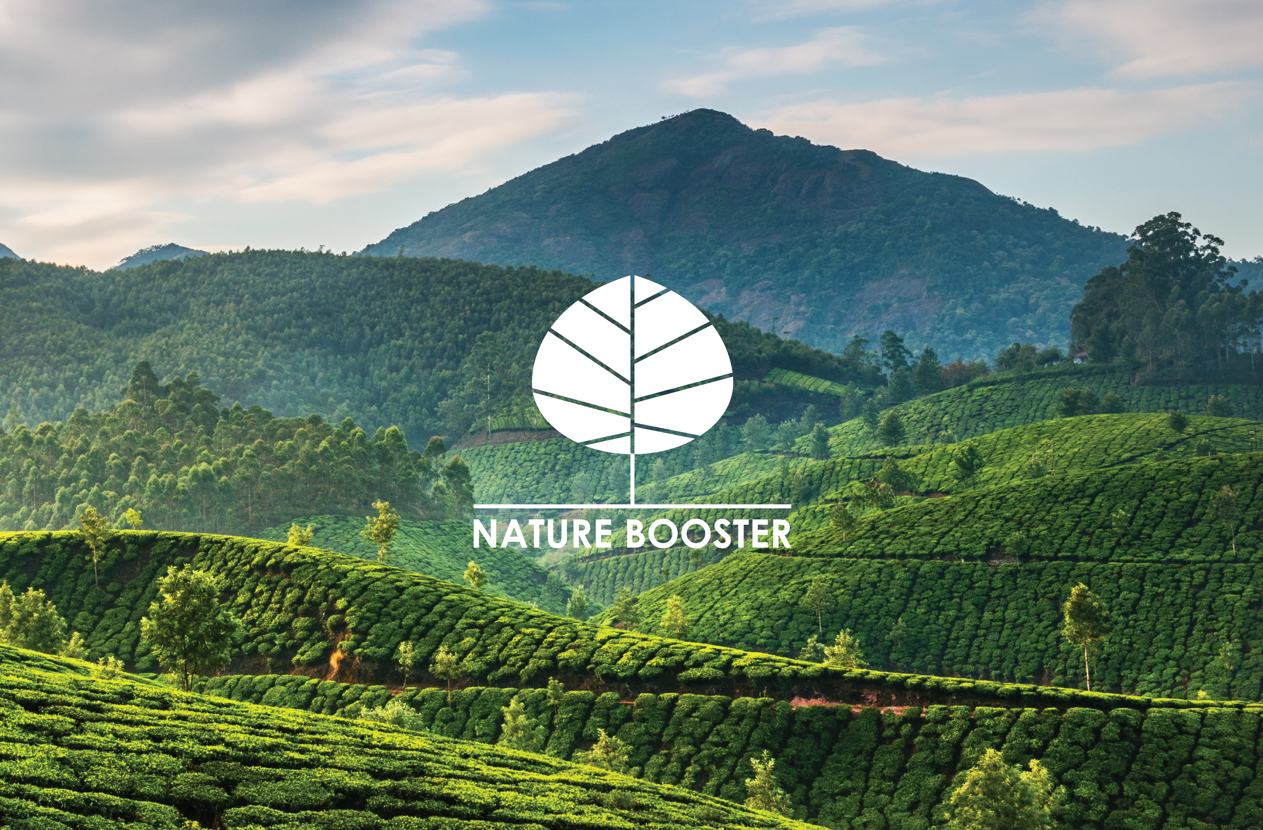 Nature Booster Stationary-05